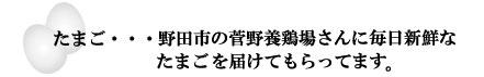 たまご(野田市の菅野養鶏場さんに毎日新鮮なたまごを届けてもらっています)